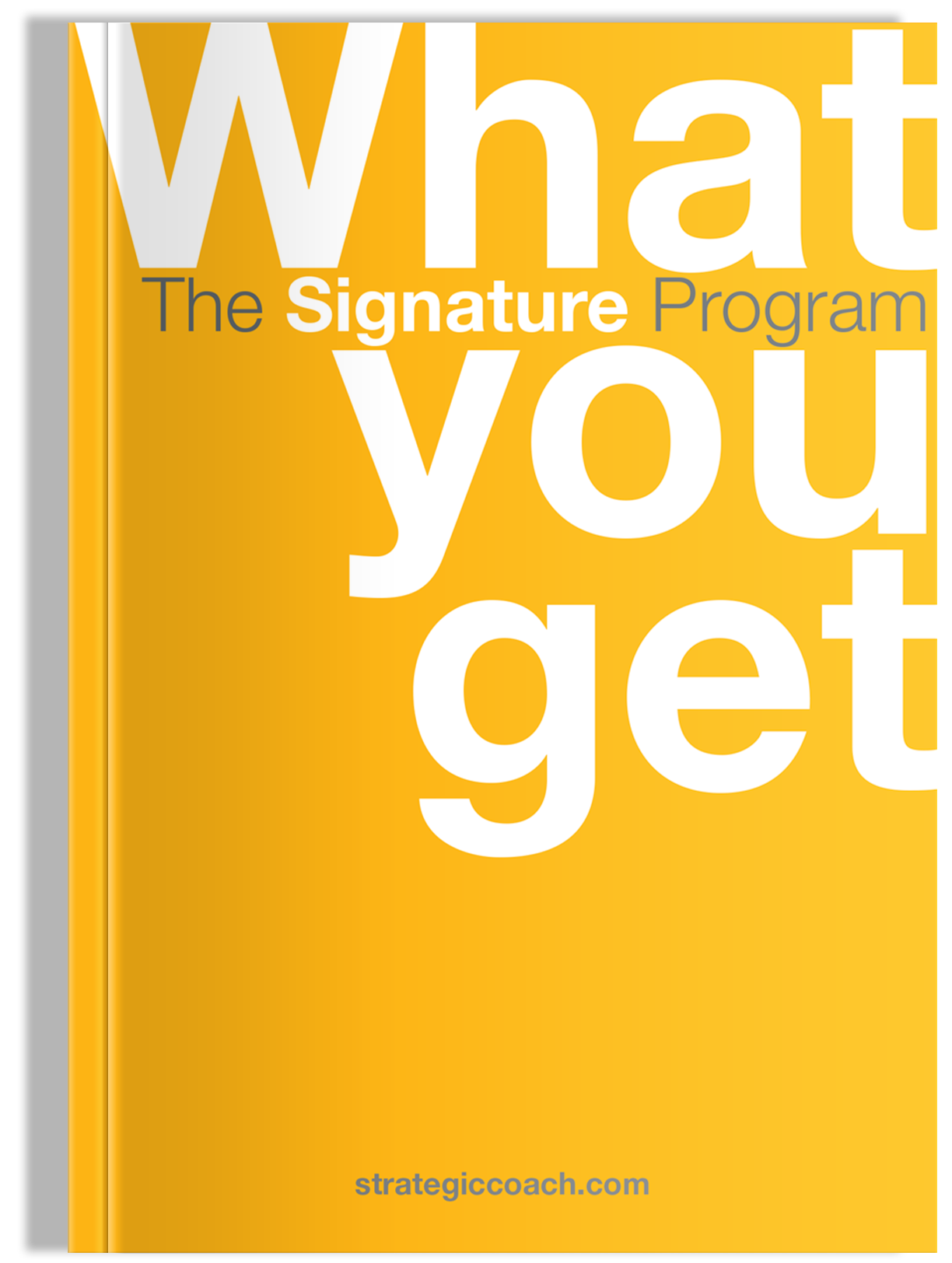 What You Get Brochure